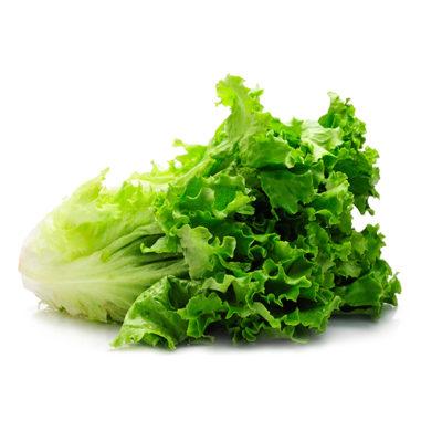 Bonipaks Green Leaf Lettuce